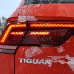 Wisst ihr noch aus welchen beiden Tieren das Wort TIGUAN zusammengesetzt wurde?