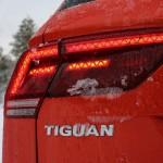 Tiguan = Tiger & Leguan