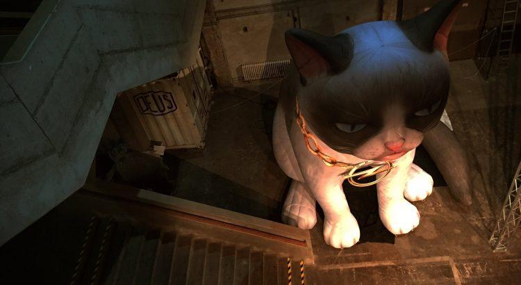 livestream: opel crossland x weltpremiere mit grumpy cat